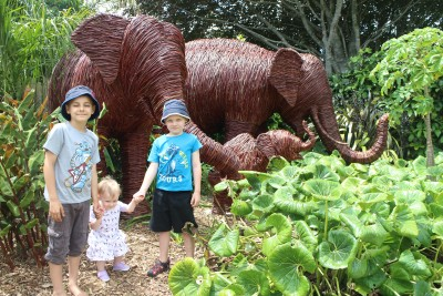 The three grand children with the elephants at Brooklands Zoo.