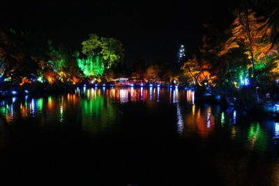 Another photo of the lights at the top Lake in Pukekura Park.