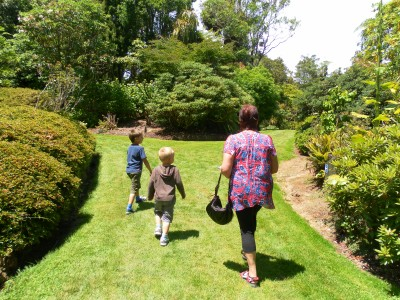 Wandering through the grounds at Pukeiti Gardens