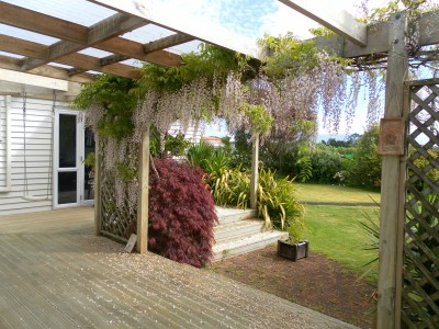 Looking across our deck towards the lounge French doors. The Wisteria is beautiful but does take a bit to keep under control.