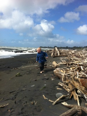Grandson playing down at the Waitara Beach on a windy day. Look at all the driftwood!